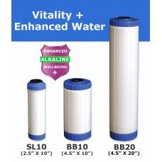 Vitality + Water Filter Cartridge Standard Water FiltersVITALITYEcoCeram